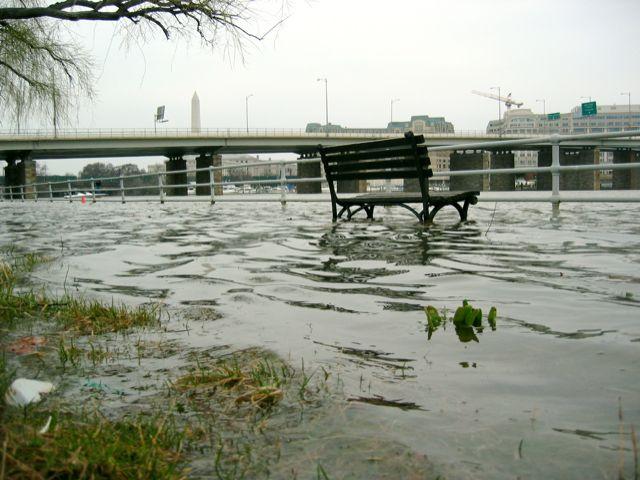A park bench sits half-submerged on Ohio Drive near the 14th Street Bridge.